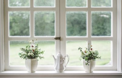 Window sill with healthy plants - air purification
